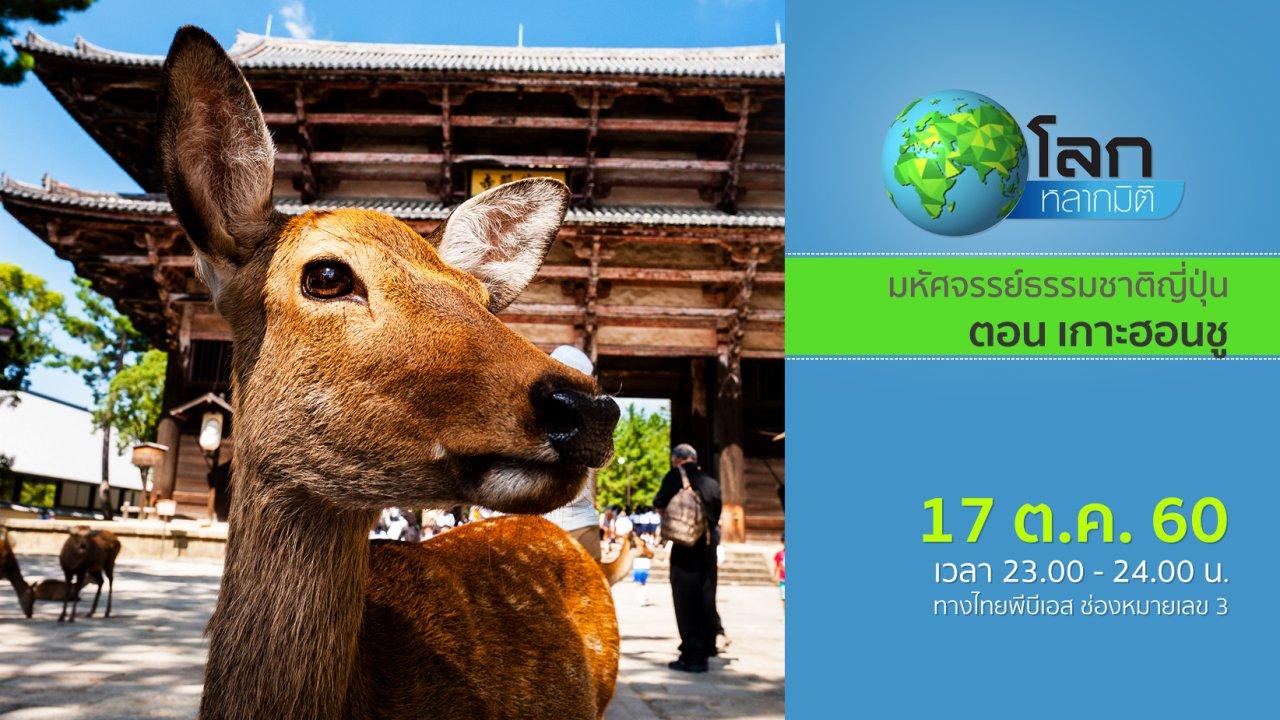 โลกหลากมิติ - มหัศจรรย์ธรรมชาติญี่ปุ่น ตอน เกาะฮอนชู