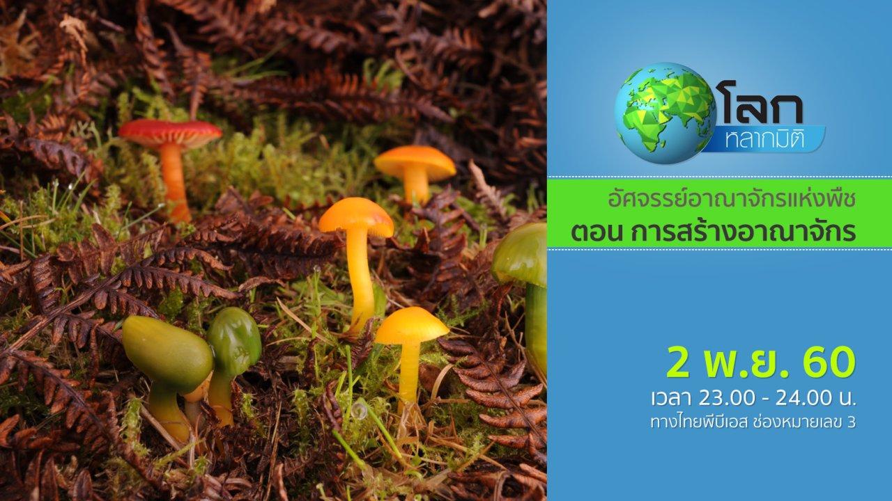 โลกหลากมิติ - อัศจรรย์อาณาจักรแห่งพืช ตอน การสร้างอาณาจักร