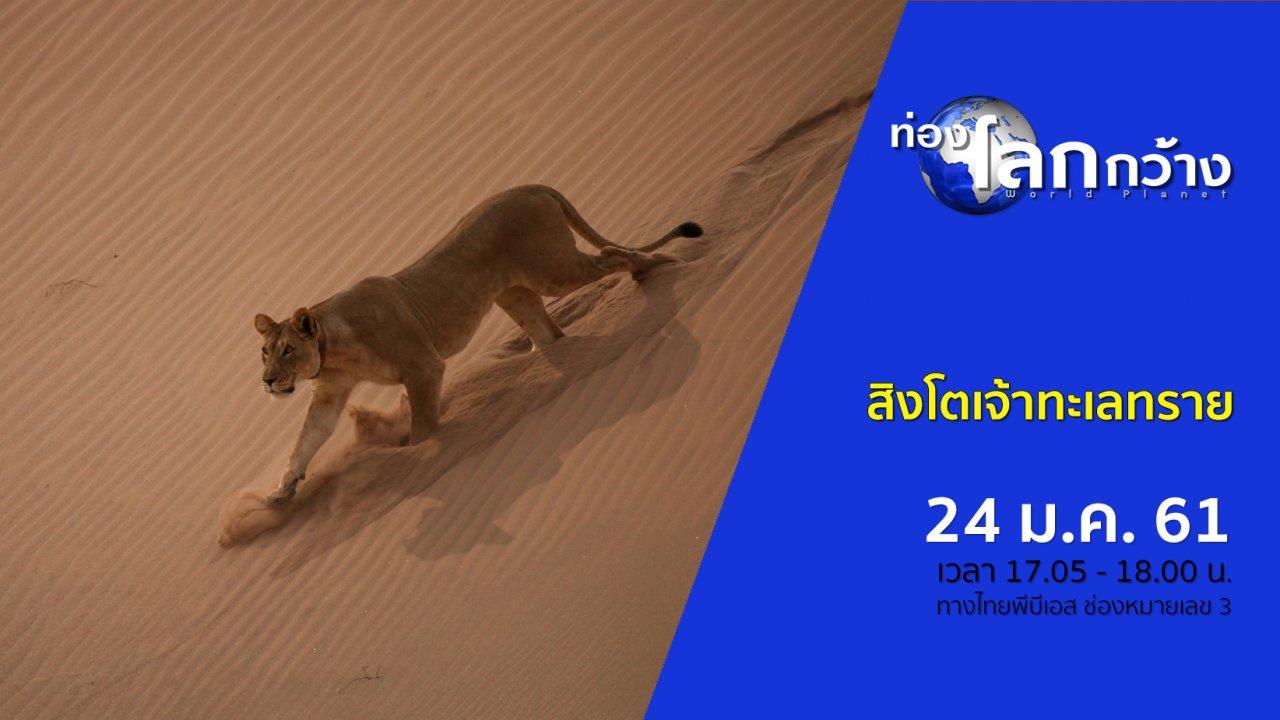 ท่องโลกกว้าง - สิงโตเจ้าทะเลทราย