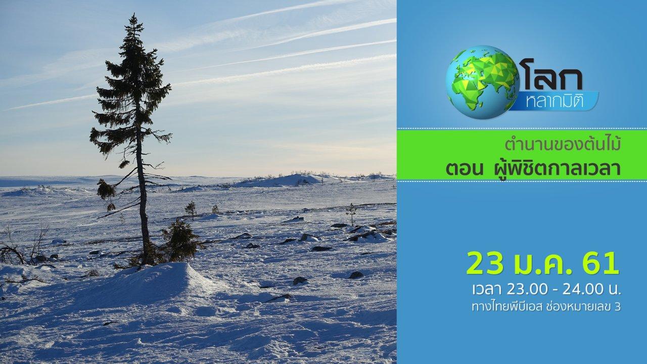 โลกหลากมิติ - ตำนานของต้นไม้ ตอน ผู้พิชิตกาลเวลา