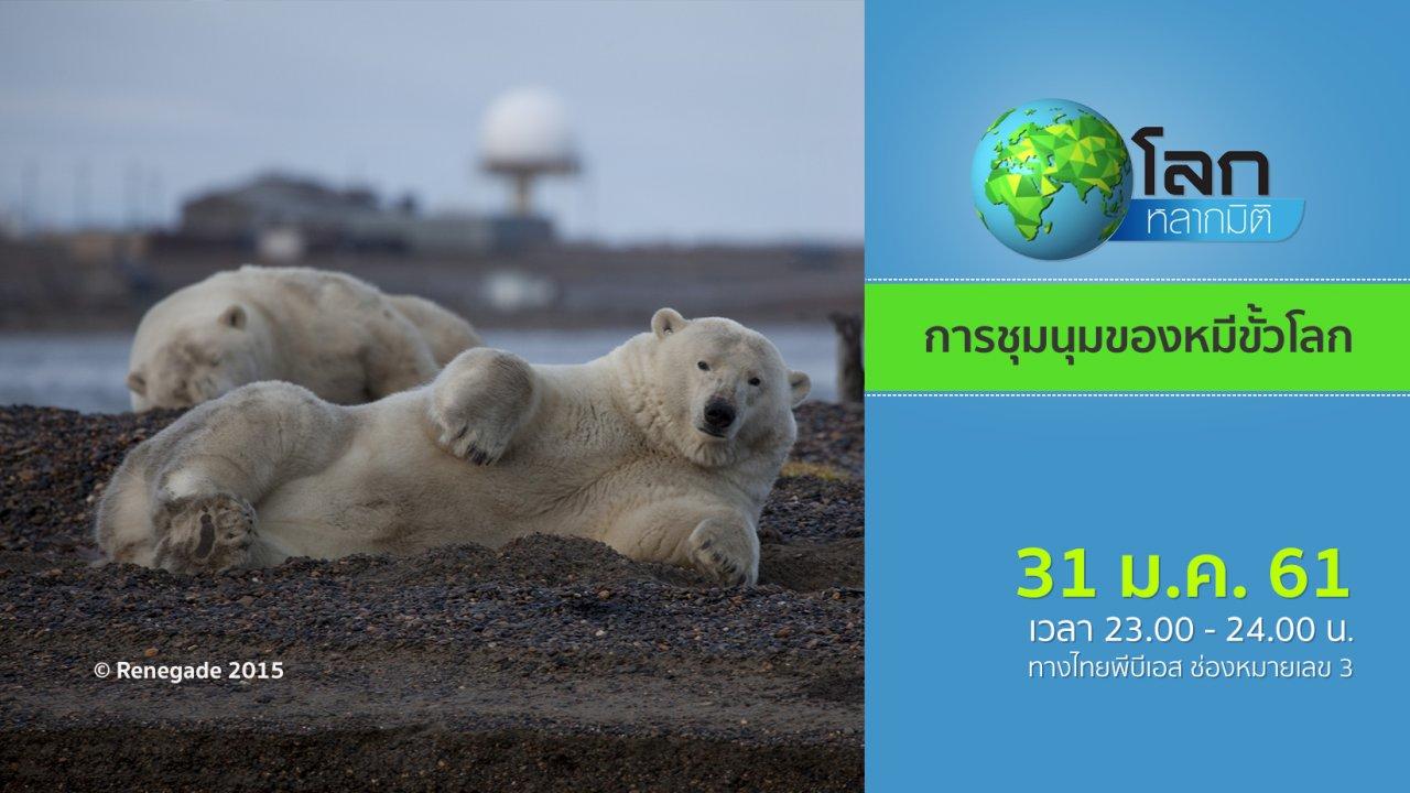 โลกหลากมิติ - การชุมนุมของหมีขั้วโลก