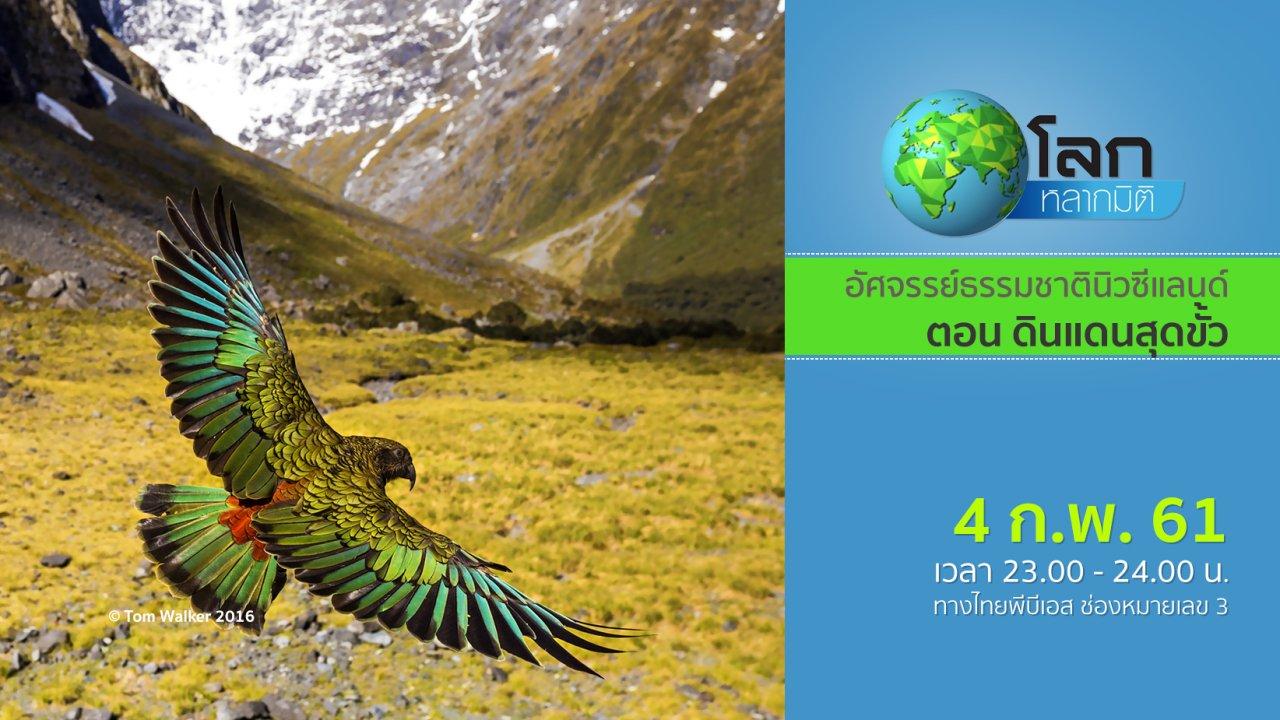 โลกหลากมิติ - อัศจรรย์ธรรมชาตินิวซีแลนด์ ตอน ดินแดนสุดขั้ว
