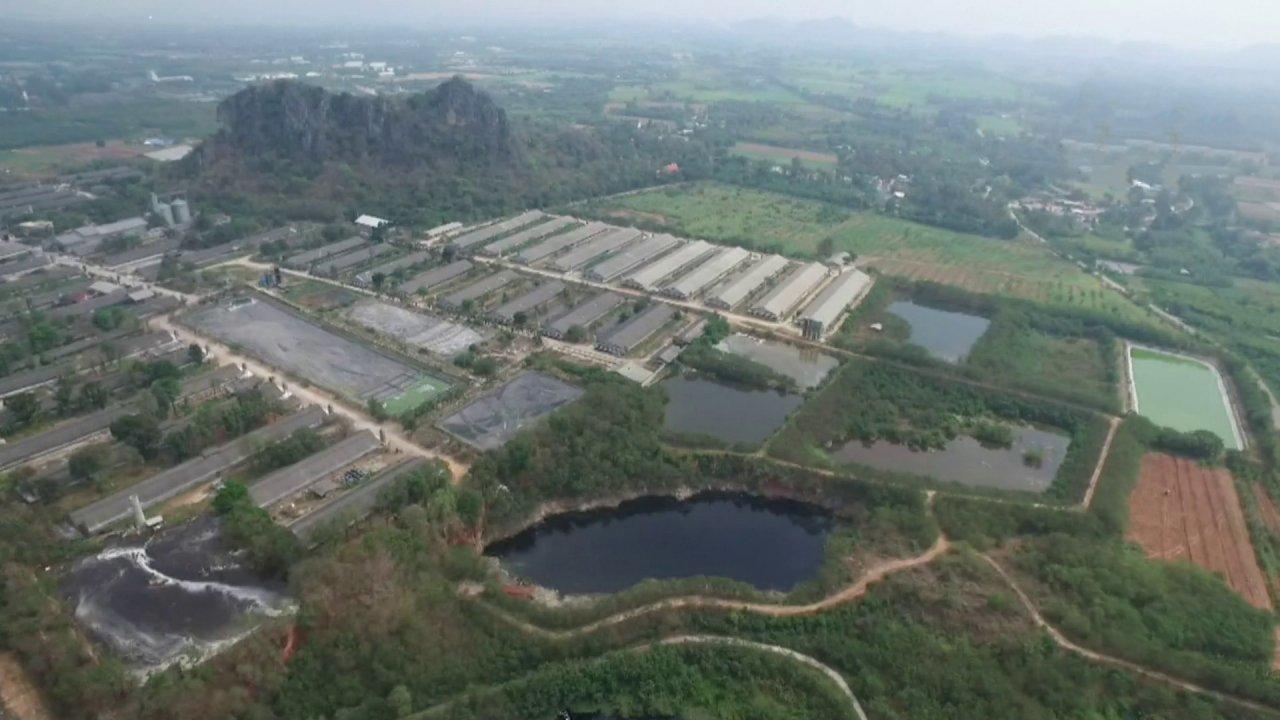 สถานีประชาชน - ฟาร์มหมูปล่อยน้ำเสียลงแม่น้ำสาธารณะ กระทบพื้นที่การเกษตร อ.เมือง จ.ราชบุรี