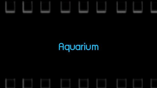 Talk to Films หนังเล่าเรื่อง - Aquarium