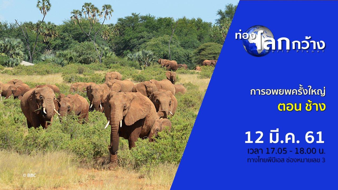 ท่องโลกกว้าง - การอพยพครั้งใหญ่ ตอน ช้าง
