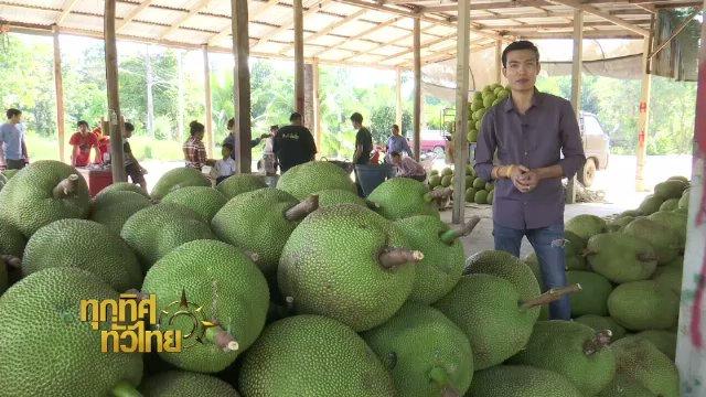 ทุกทิศทั่วไทย - ประเด็นข่าว (17 พ.ย. 60)