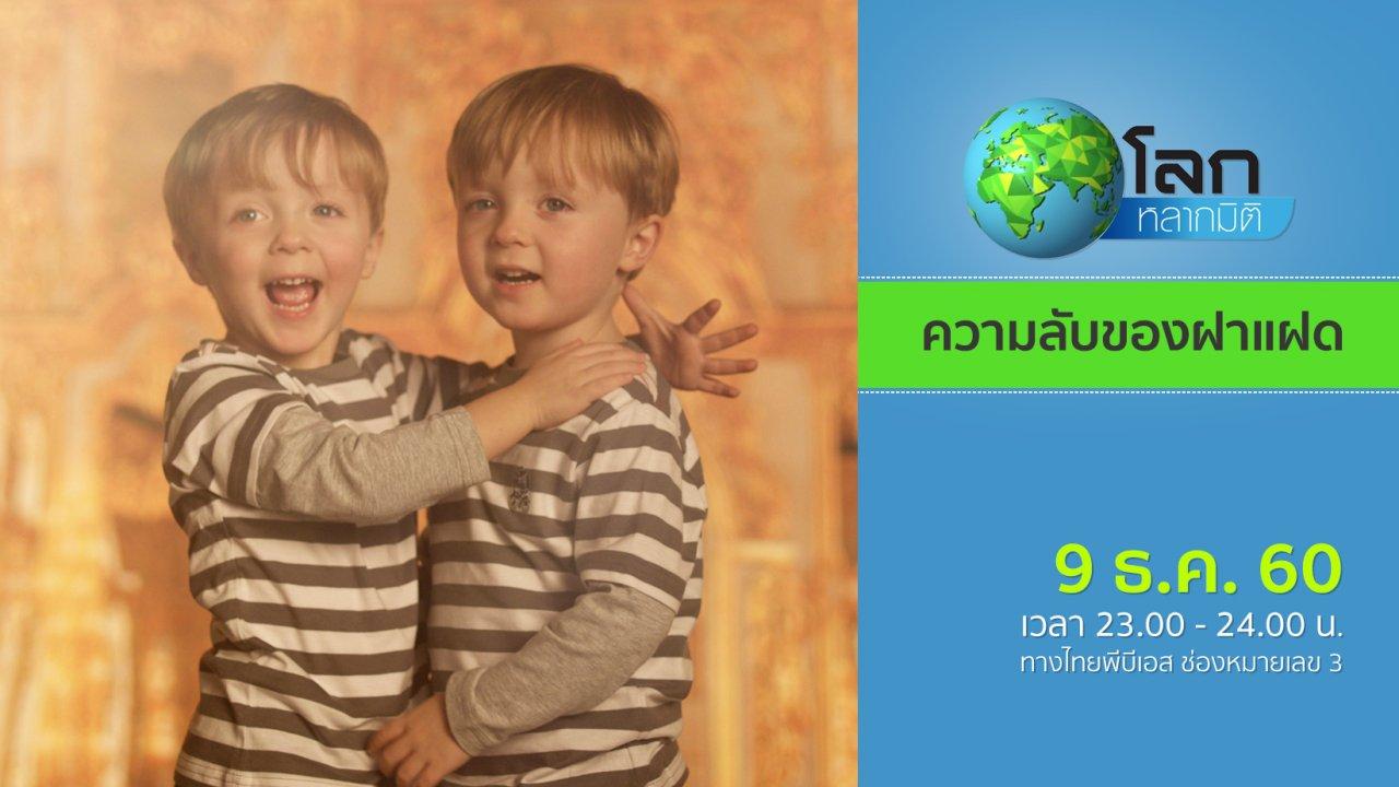 โลกหลากมิติ - ความลับของฝาแฝด