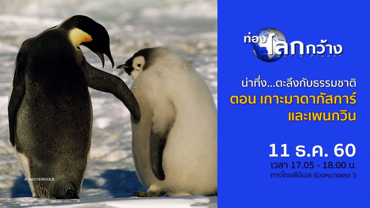 ท่องโลกกว้าง - น่าทึ่ง...ตะลึงกับธรรมชาติ ตอน เกาะมาดากัสการ์ และเพนกวิน