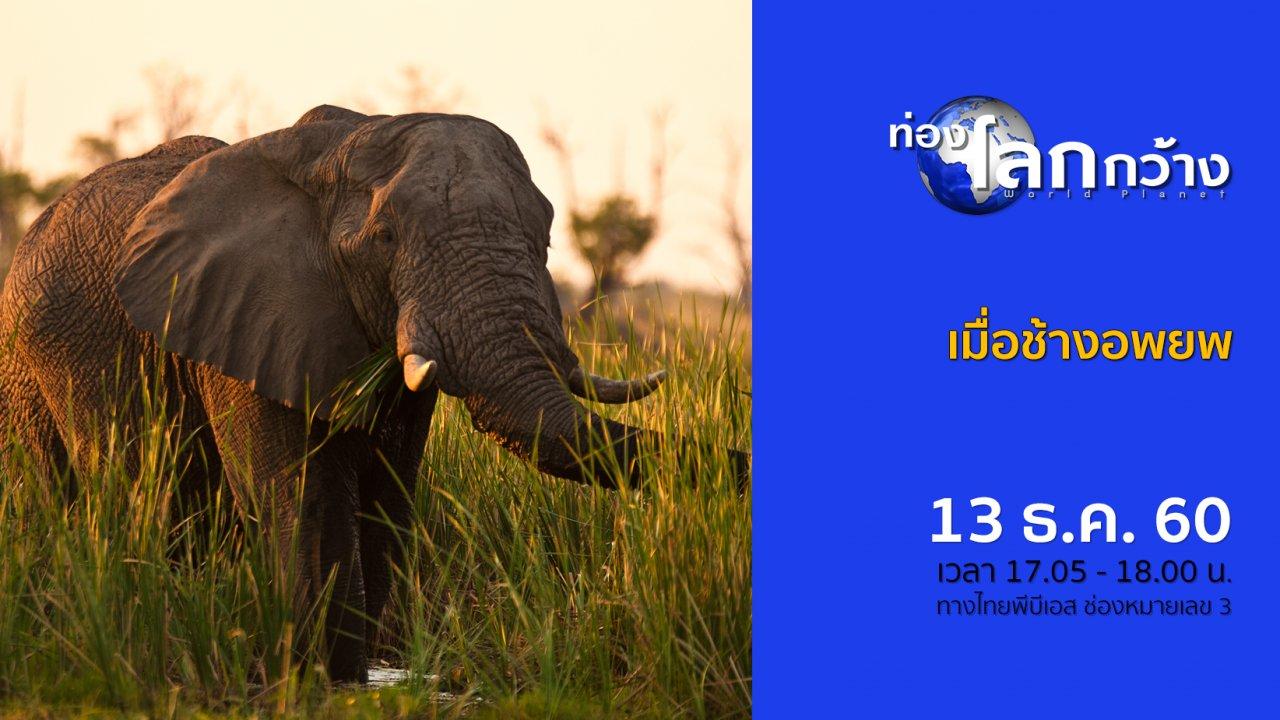 ท่องโลกกว้าง - เมื่อช้างอพยพ