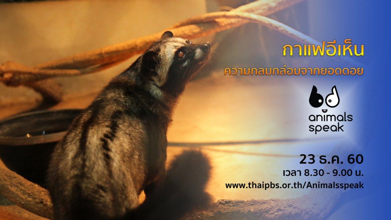 Animals Speak - กาแฟอีเห็น...ความกลมกล่อมจากยอดดอย
