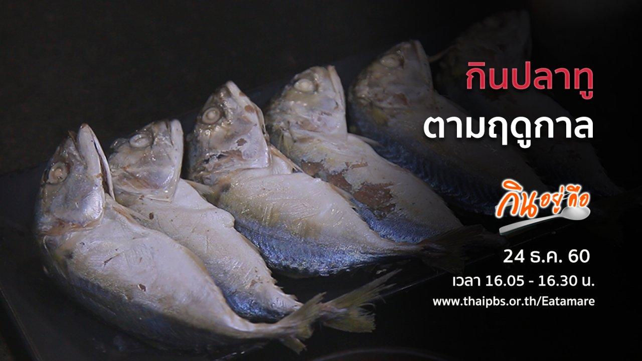 กินอยู่...คือ - กินปลาทูตามฤดูกาล