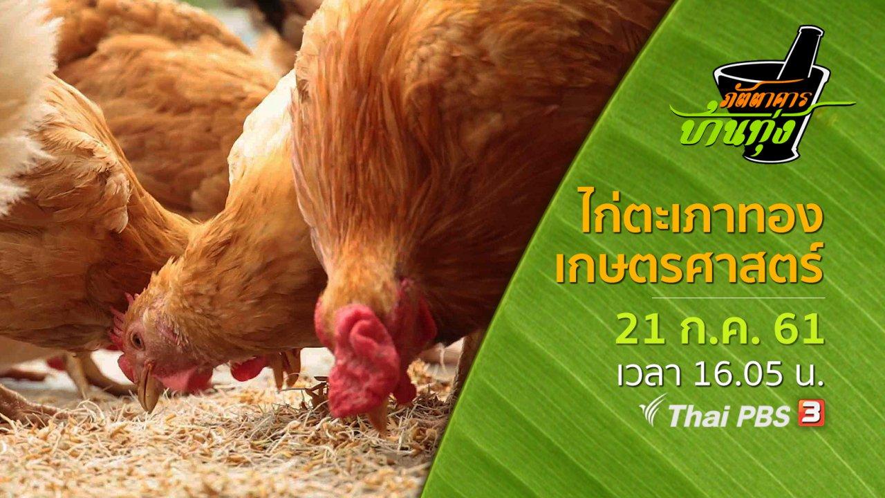 ภัตตาคารบ้านทุ่ง - ไก่ตะเภาทองเกษตรศาสตร์