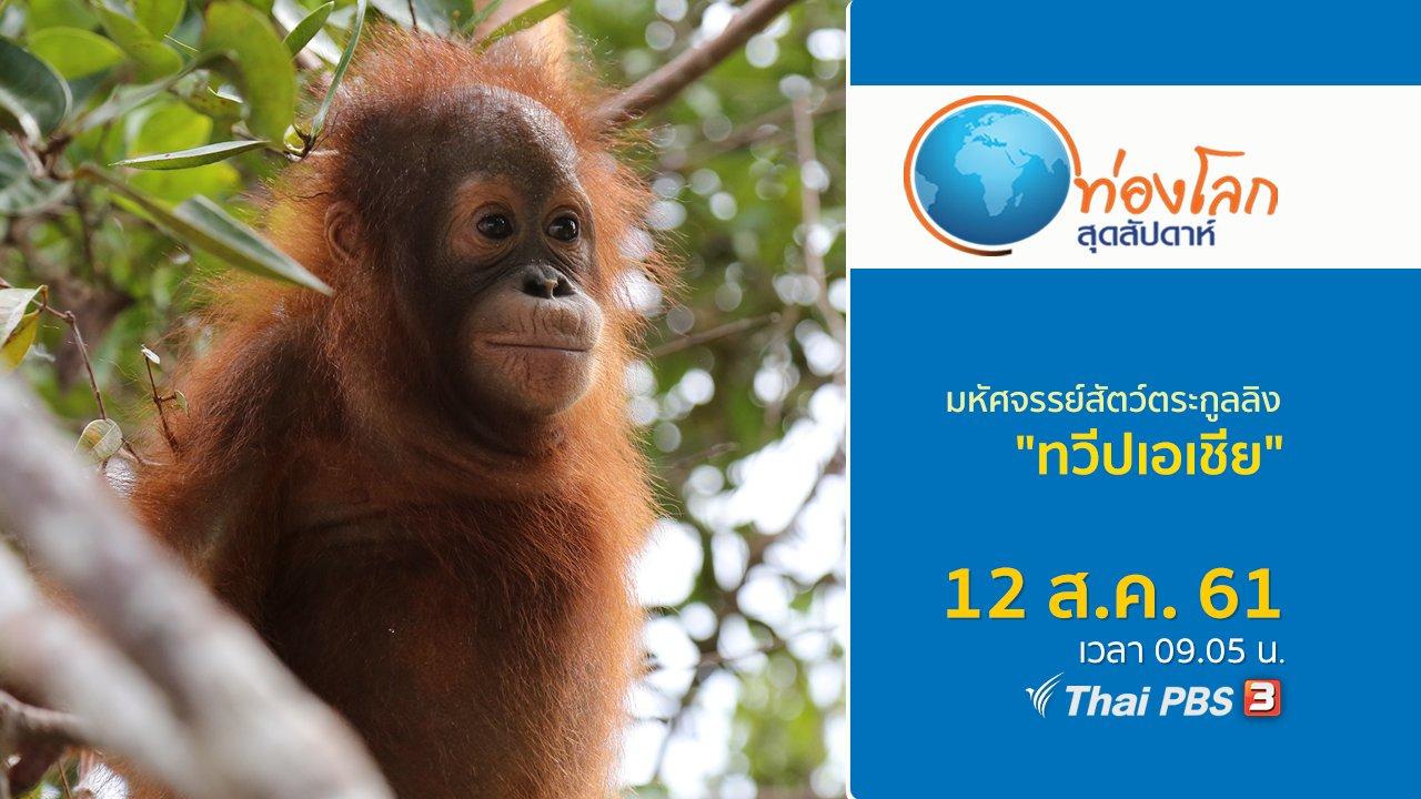 ท่องโลกสุดสัปดาห์ - มหัศจรรย์สัตว์ตระกูลลิง ตอน ทวีปเอเชีย