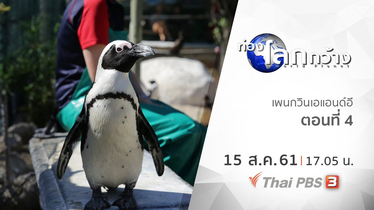 ท่องโลกกว้าง - เพนกวินเอแอนด์อี ตอนที่ 4