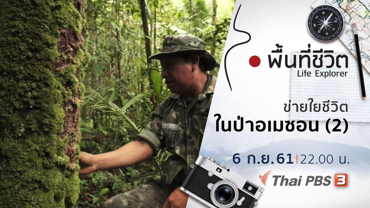 พื้นที่ชีวิต - ข่ายใยชีวิตในป่าอเมซอน (2)