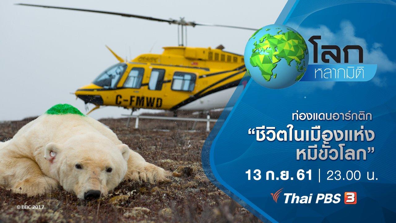 โลกหลากมิติ - ท่องแดนอาร์กติก ตอน ชีวิตในเมืองแห่งหมีขั้วโลก