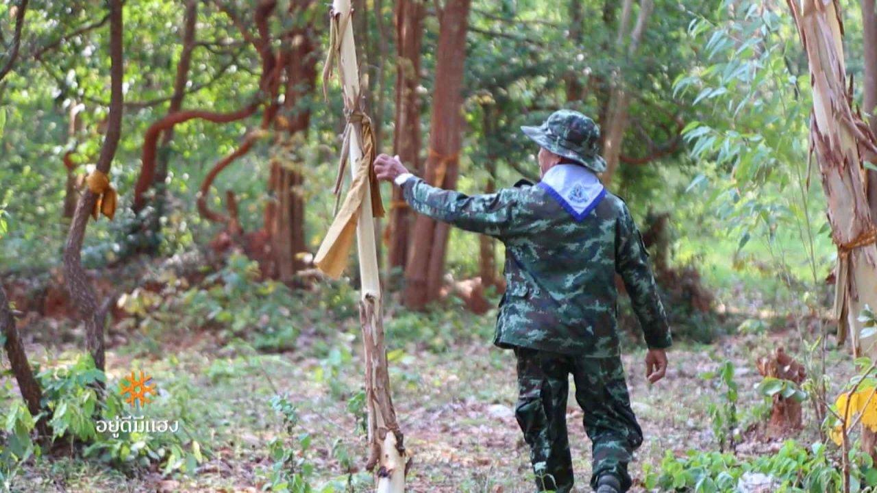 ภูมิภาค 3.0 - กันชนป่ามรดกโลก, ป่าดงนามล, ฅนอาสา ดูแลป่าโตนสะตอ