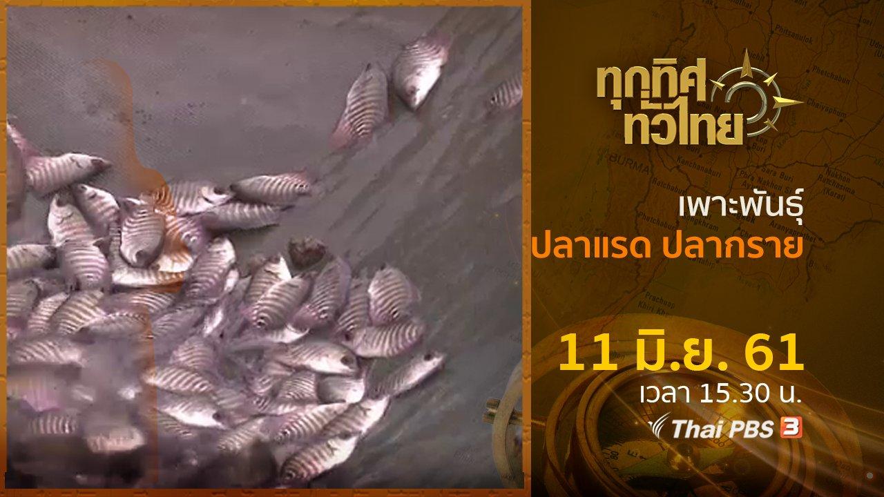 ทุกทิศทั่วไทย - ประเด็นข่าว ( 11 มิ.ย. 61)