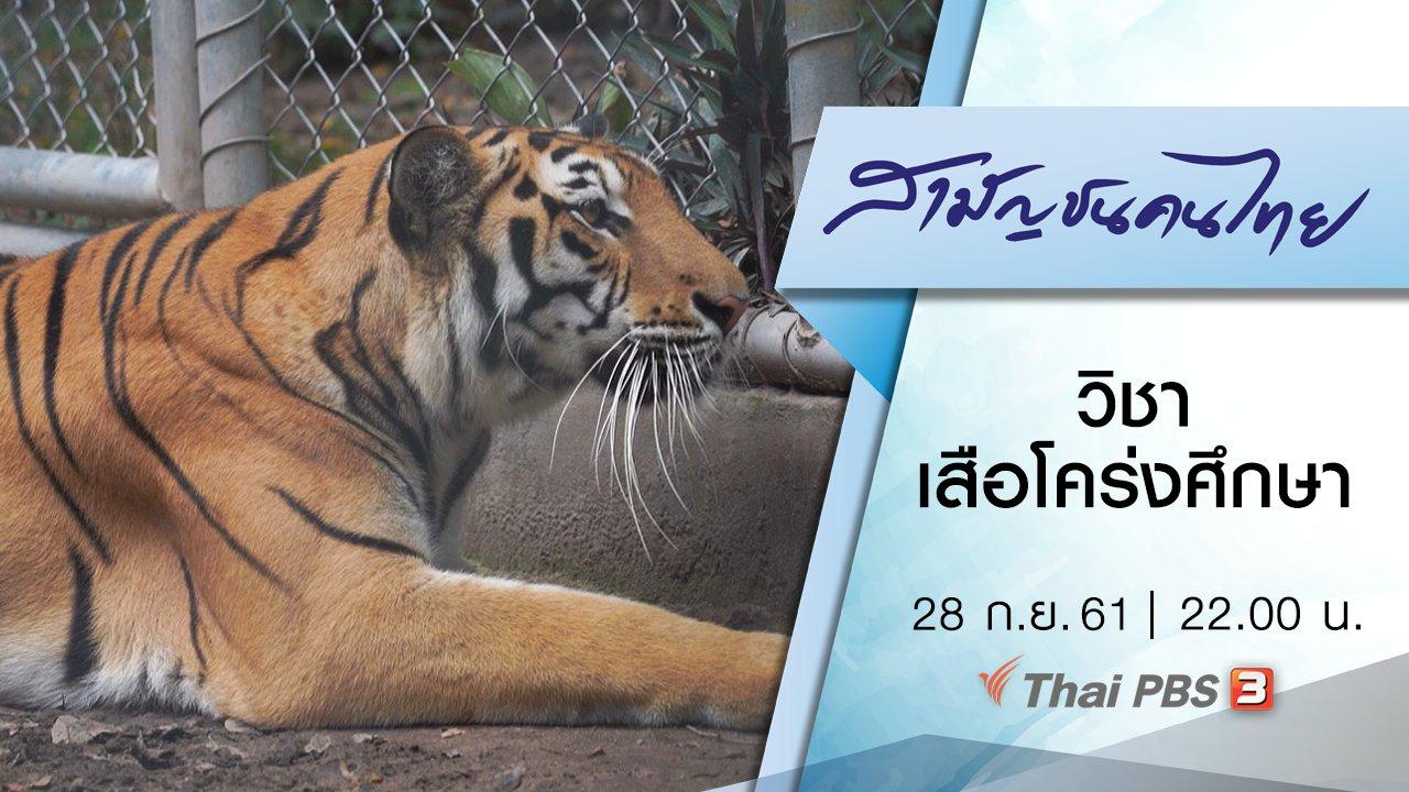 สามัญชนคนไทย - วิชาเสือโคร่งศึกษา