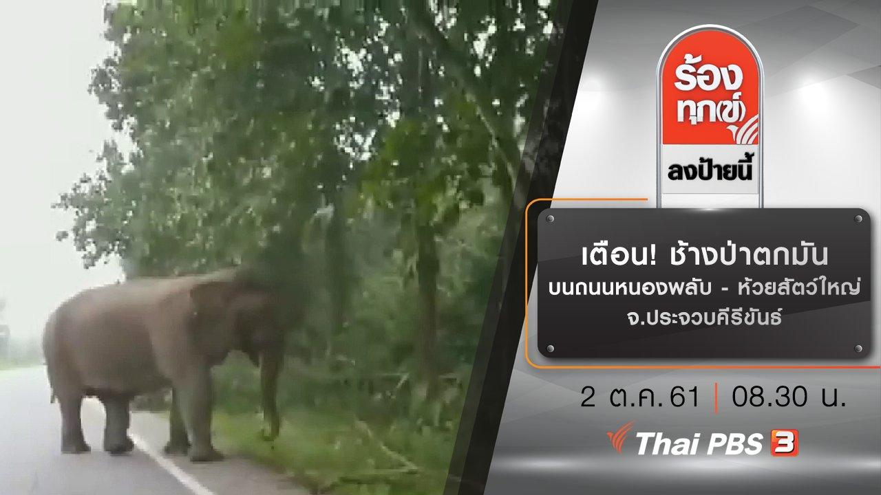 ร้องทุก(ข์) ลงป้ายนี้ - เตือน! ช้างป่าตกมันบนถนนหนองพลับ - ห้วยสัตว์ใหญ่ จ.ประจวบคีรีขันธ์
