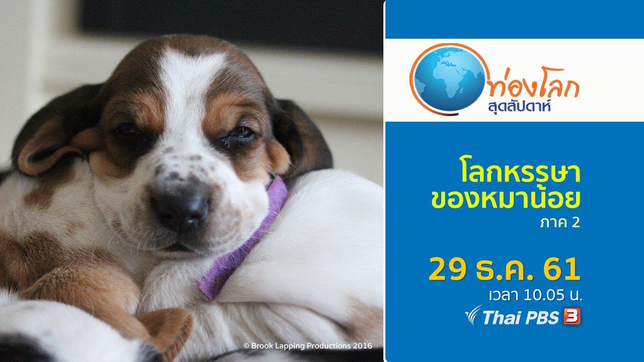 ท่องโลกสุดสัปดาห์ - โลกหรรษาของหมาน้อย ภาค 2 ตอนที่ 8