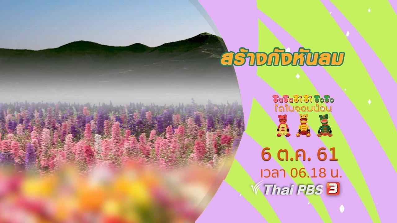 TataTitiToto ไดโนมหัศจรรย์ - ดอกไม้สลับสี