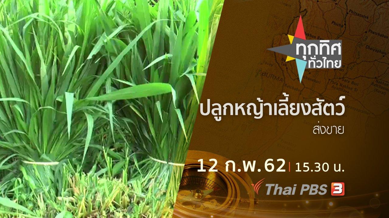 ทุกทิศทั่วไทย - ประเด็นข่าว (12 ก.พ.62)