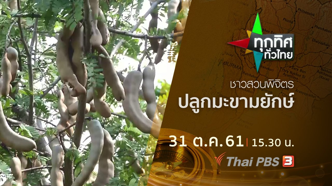 ทุกทิศทั่วไทย - ประเด็นข่าว ( 31 ต.ค. 61)
