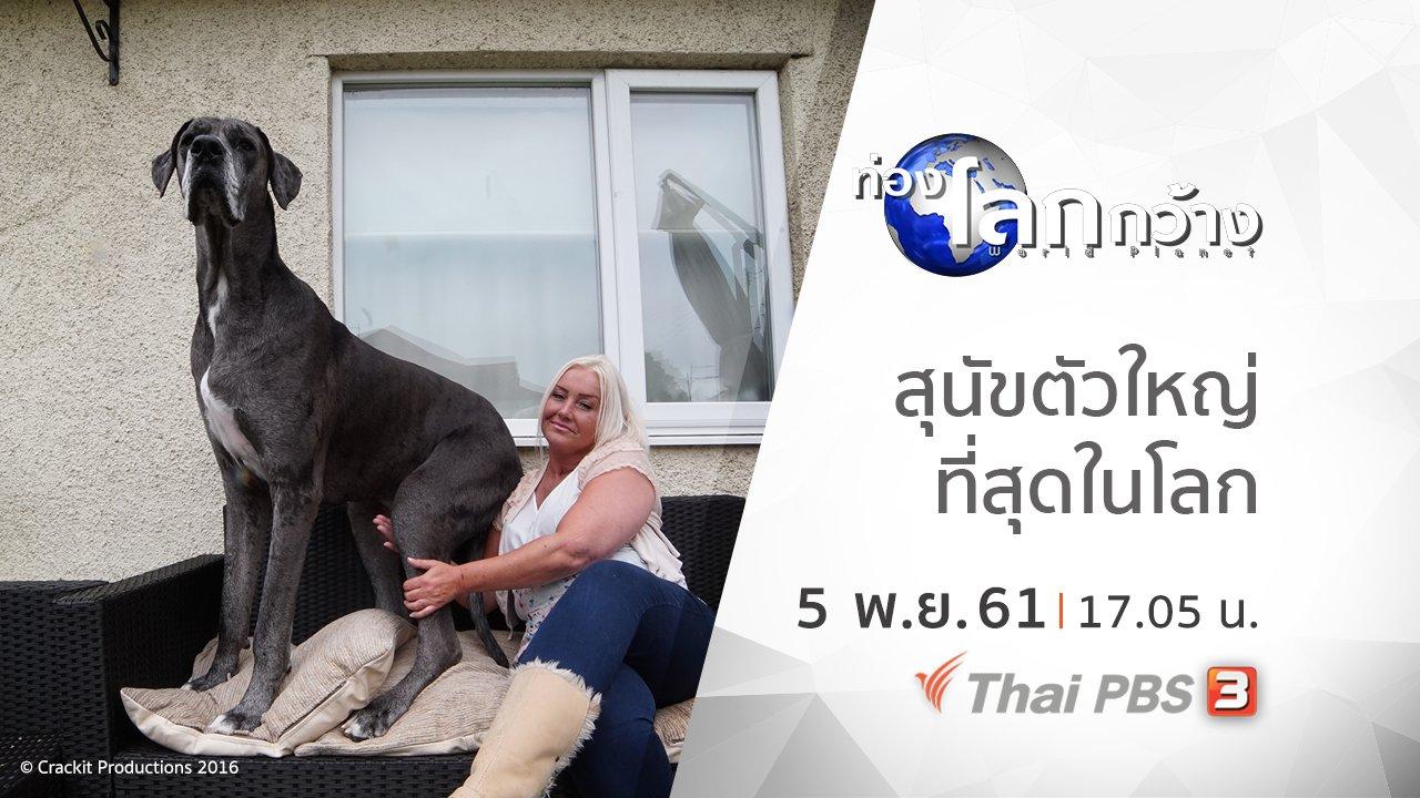 ท่องโลกกว้าง - สุนัขตัวใหญ่ที่สุดในโลก