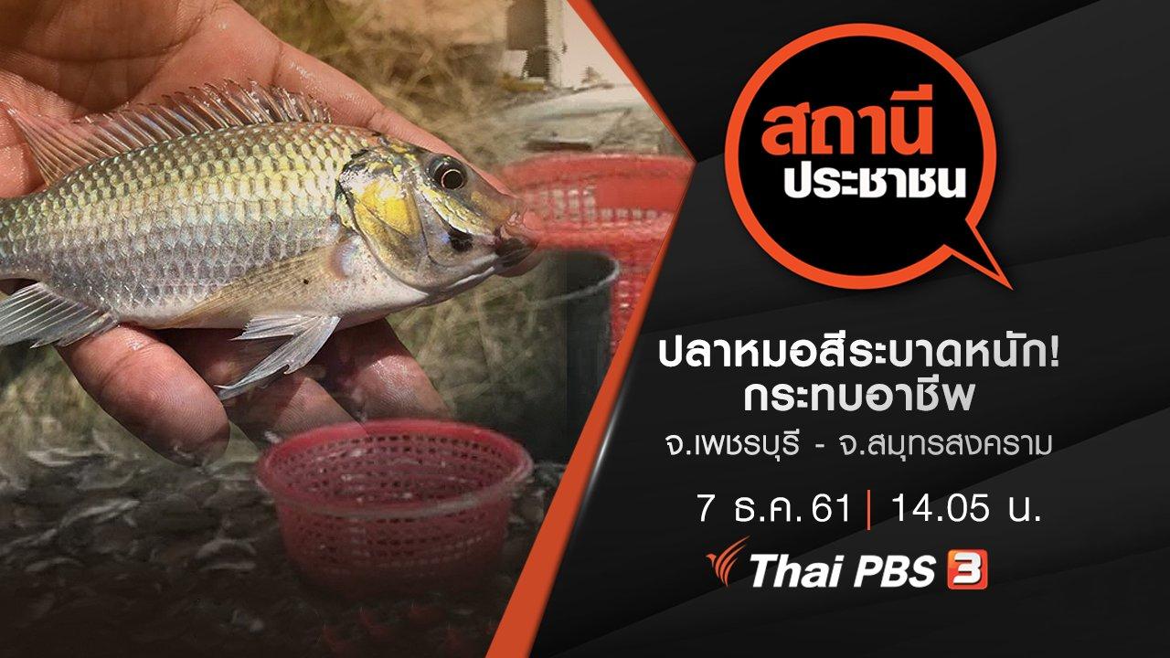 สถานีประชาชน - ปลาหมอสีระบาดหนัก! กระทบอาชีพ จ.เพชรบุรี - จ.สมุทรสงคราม