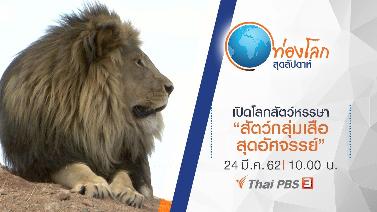 ท่องโลกสุดสัปดาห์ - เปิดโลกสัตว์หรรษา ตอน สัตว์กลุ่มเสือสุดอัศจรรย์