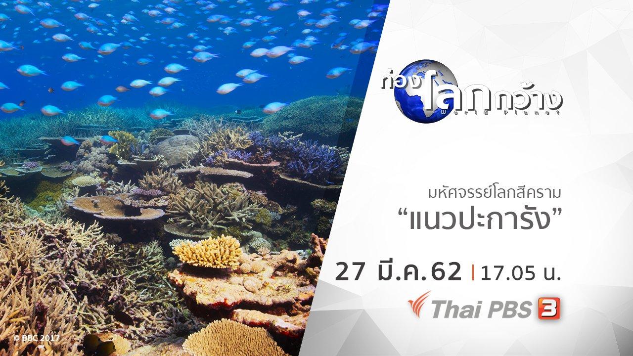 ท่องโลกกว้าง - มหัศจรรย์โลกสีคราม ตอน แนวปะการัง