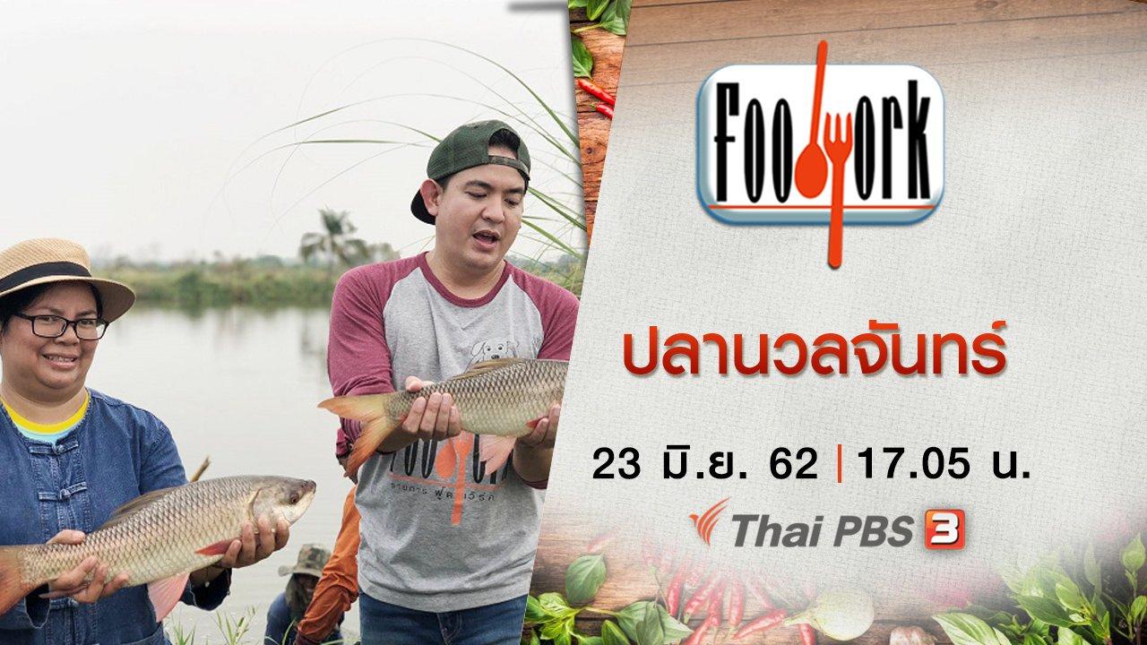 Foodwork - ปลานวลจันทร์