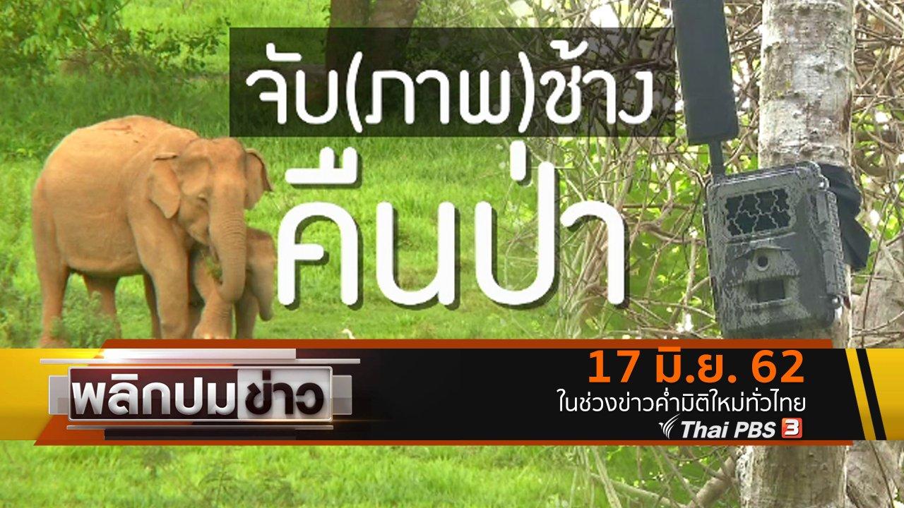 พลิกปมข่าว - จับ(ภาพ)ช้างคืนป่า