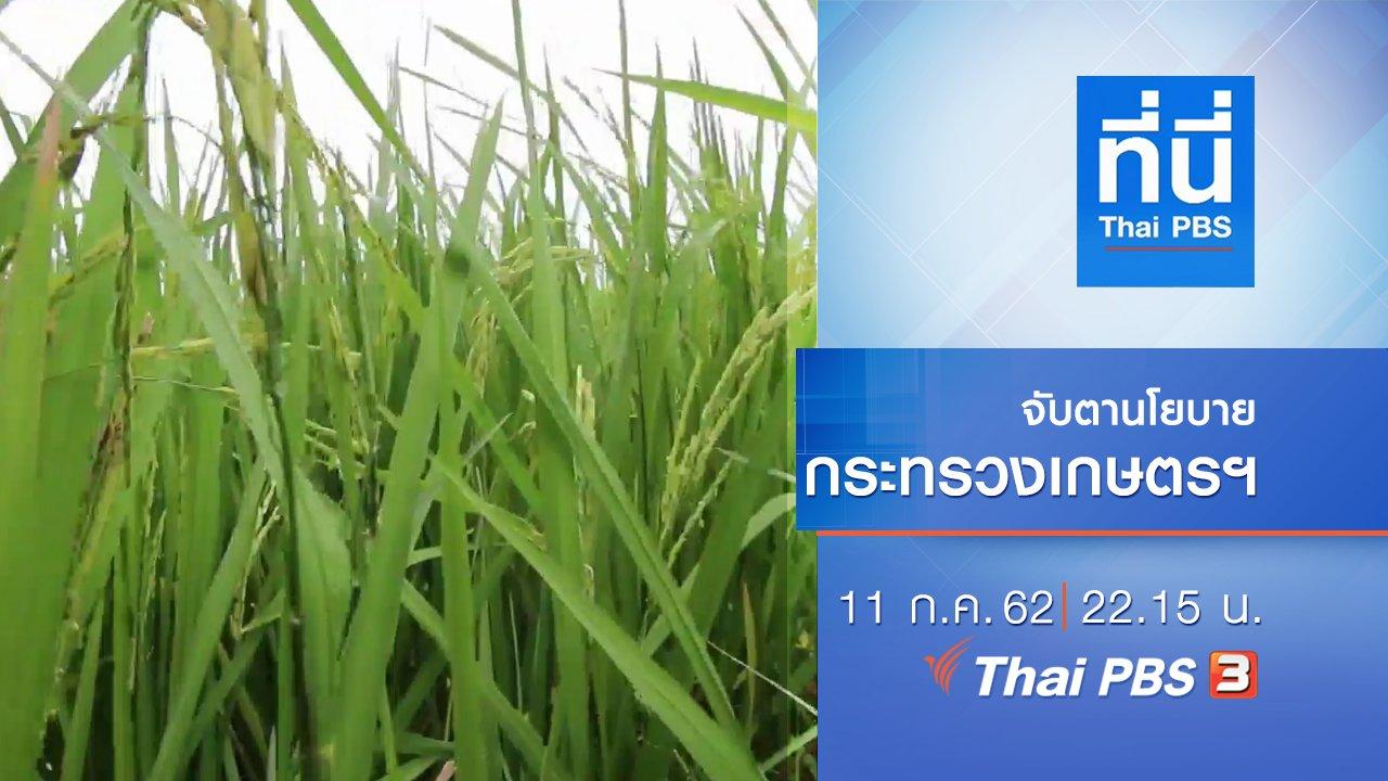 ที่นี่ Thai PBS - ประเด็นข่าว (11 ก.ค. 62)