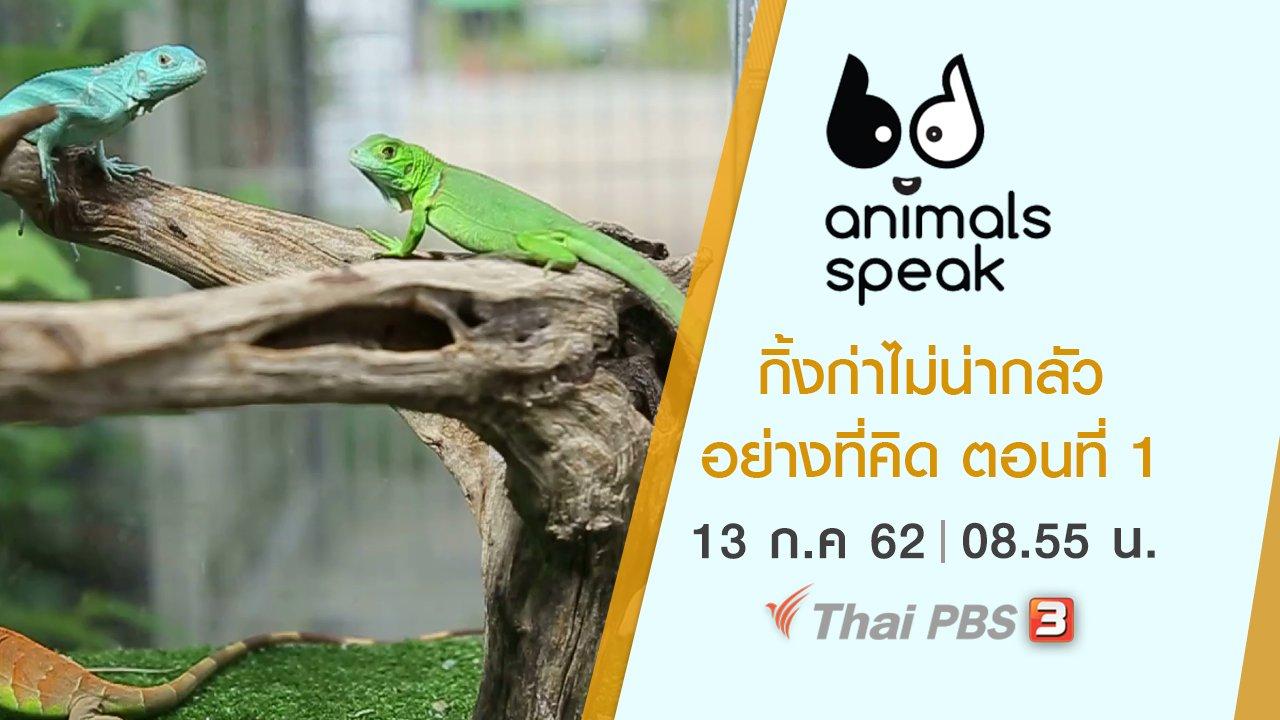 Animals Speak - กิ้งก่าไม่น่ากลัวอย่างที่คิด ตอนที่ 1