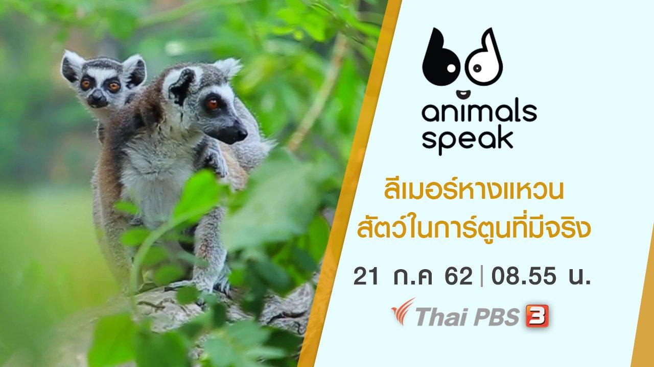 Animals Speak - ลีเมอร์หางแหวน สัตว์ในการ์ตูนที่มีจริง