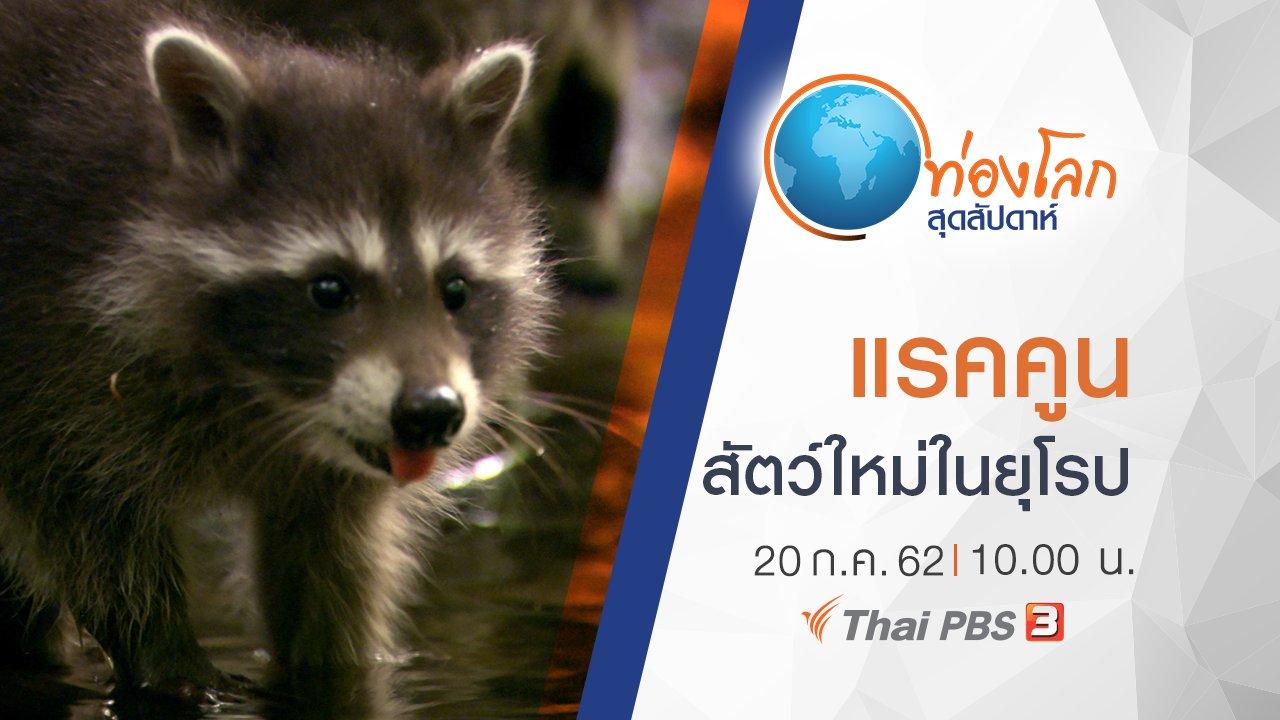 ท่องโลกสุดสัปดาห์ - แรคคูน สัตว์ใหม่ในยุโรป