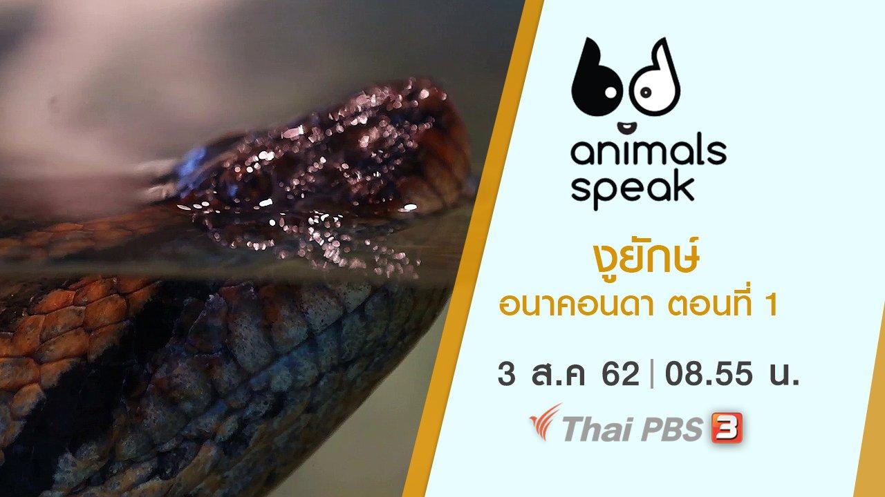 Animals Speak - งูยักษ์อนาคอนดา ตอนที่ 1