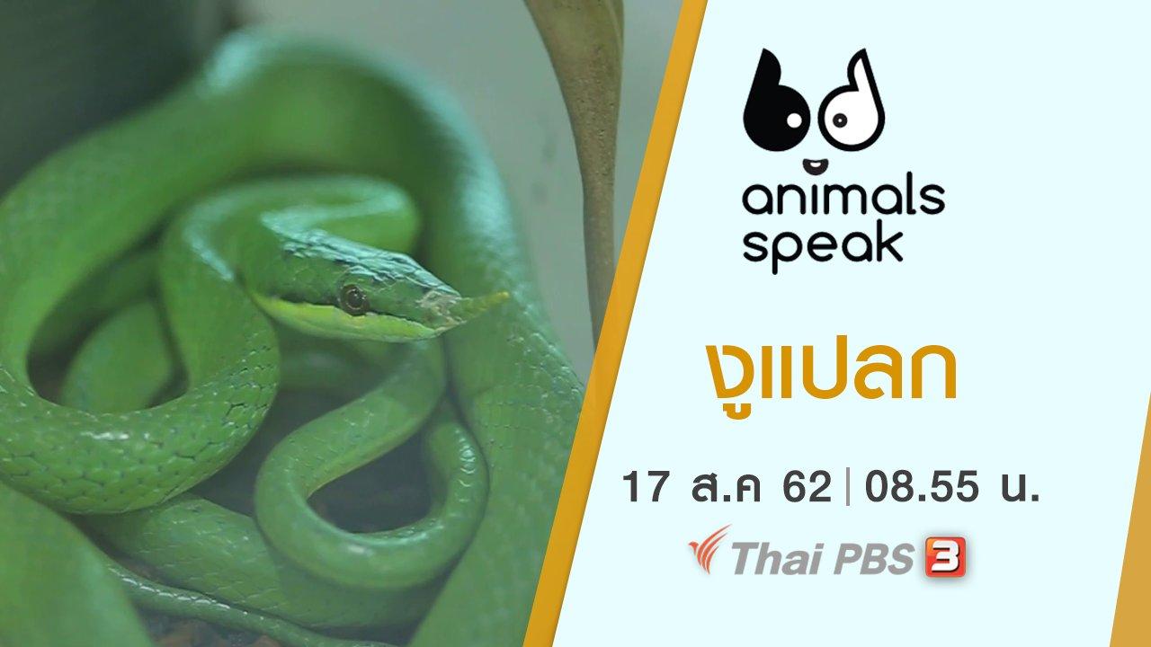 Animals Speak - งูแปลก