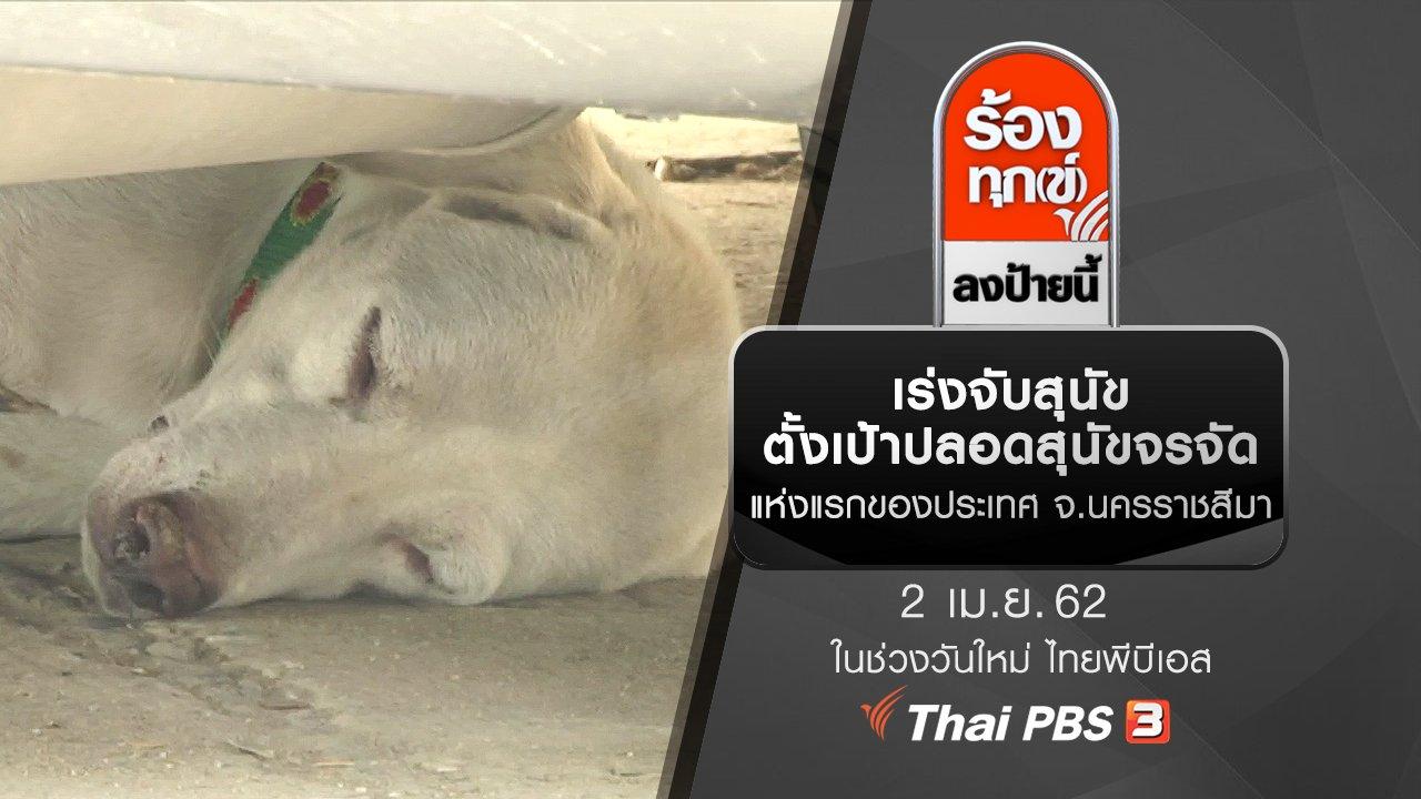 ร้องทุก(ข์) ลงป้ายนี้ - เร่งจับสุนัขตั้งเป้าปลอดสุนัขจรจัดแห่งแรกของประเทศ จ.นครราชสีมา