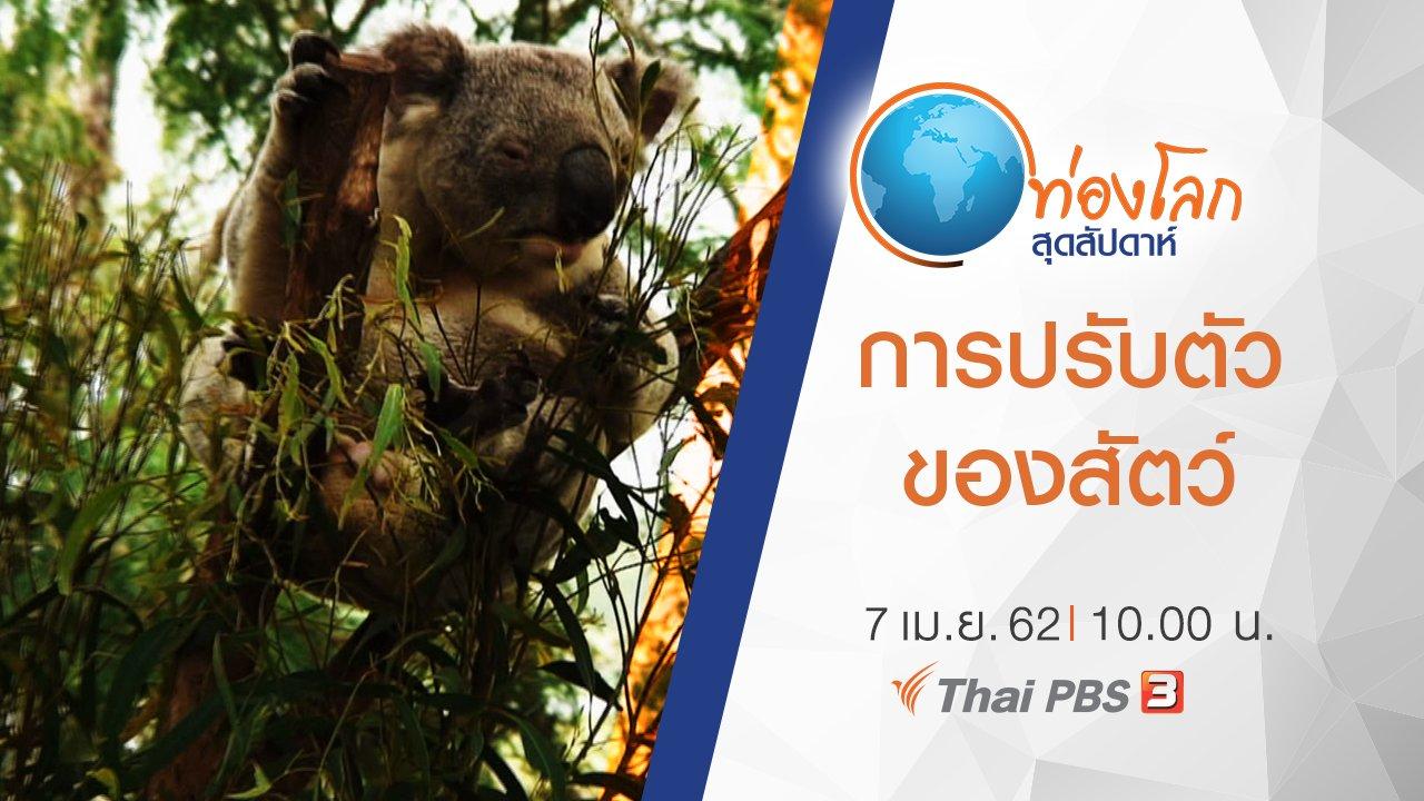ท่องโลกสุดสัปดาห์ - เปิดโลกสัตว์หรรษา ตอน การปรับตัวของสัตว์