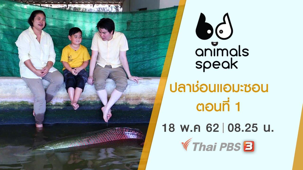 Animals Speak - ปลาช่อนแอมะซอน ตอนที่ 1
