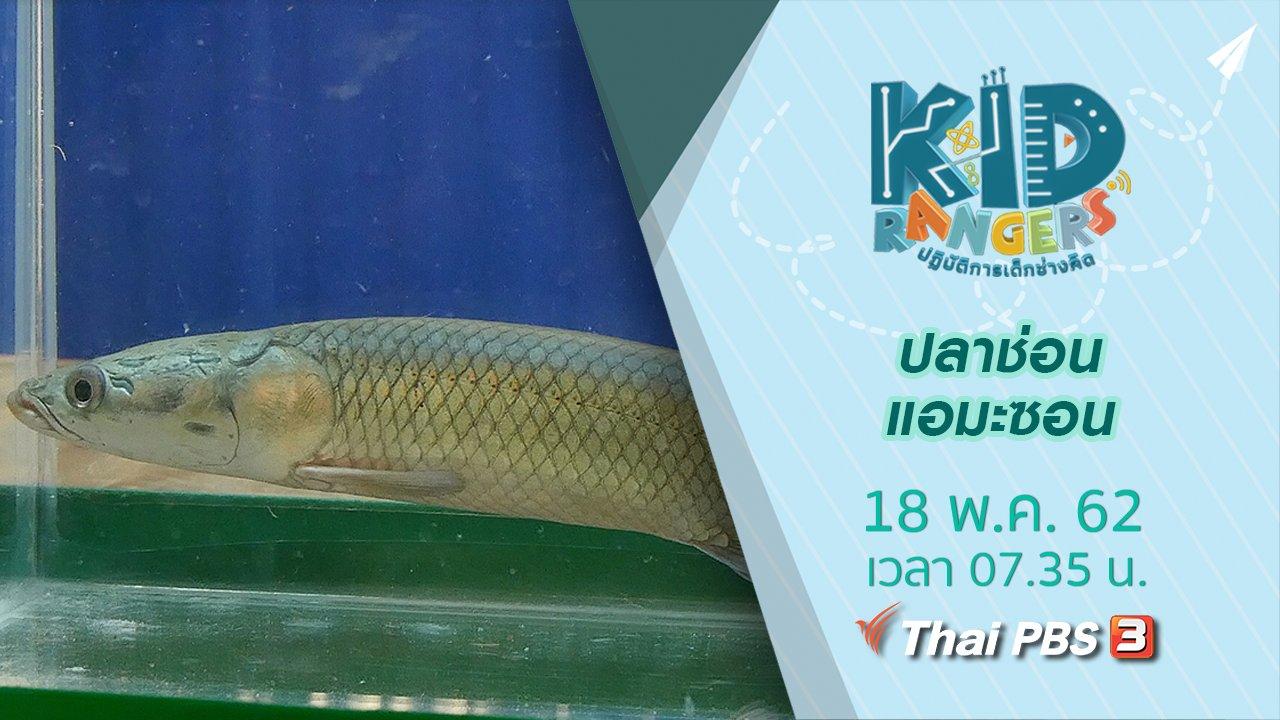 Kid Rangers ปฏิบัติการเด็กช่างคิด - ปลาช่อนแอมะซอน