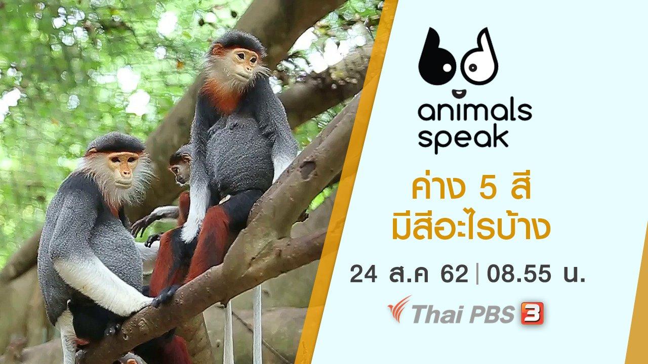 Animals Speak - ค่าง 5 สี มีสีอะไรบ้าง