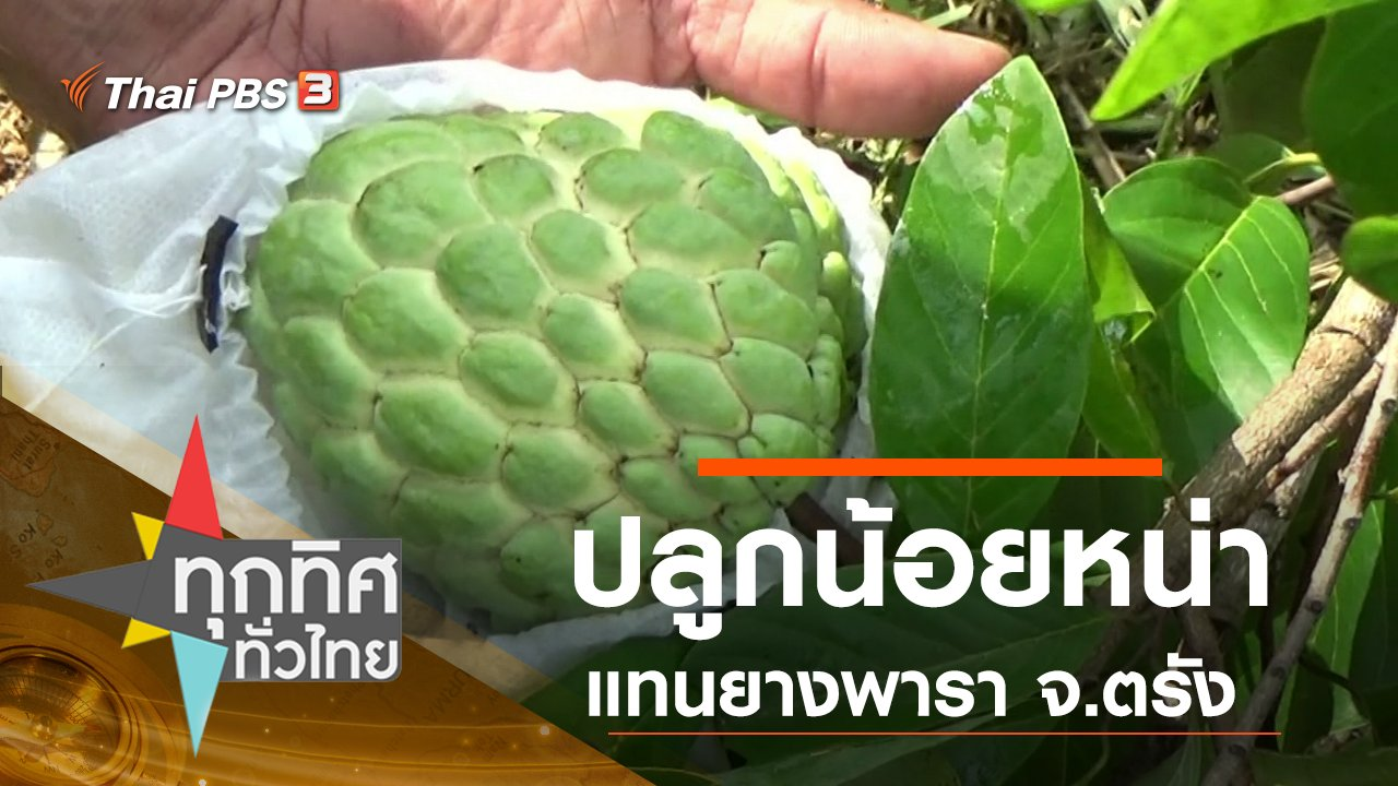 ทุกทิศทั่วไทย - ประเด็นข่าว (16 ก.ย. 62)