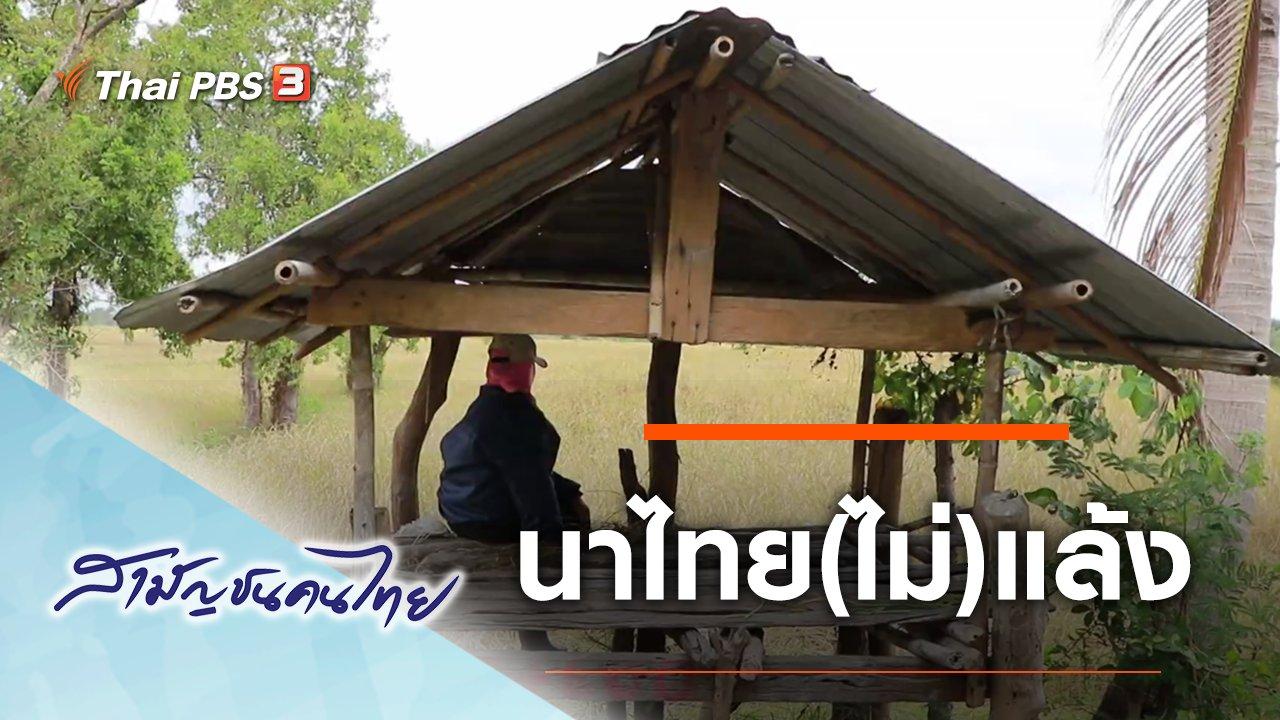 สามัญชนคนไทย - นาไทย(ไม่)แล้ง