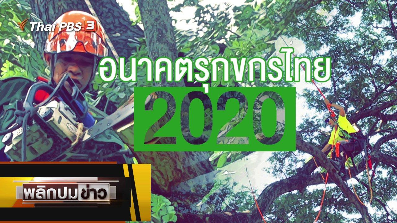 พลิกปมข่าว - อนาคตรุกขกรไทย 2020