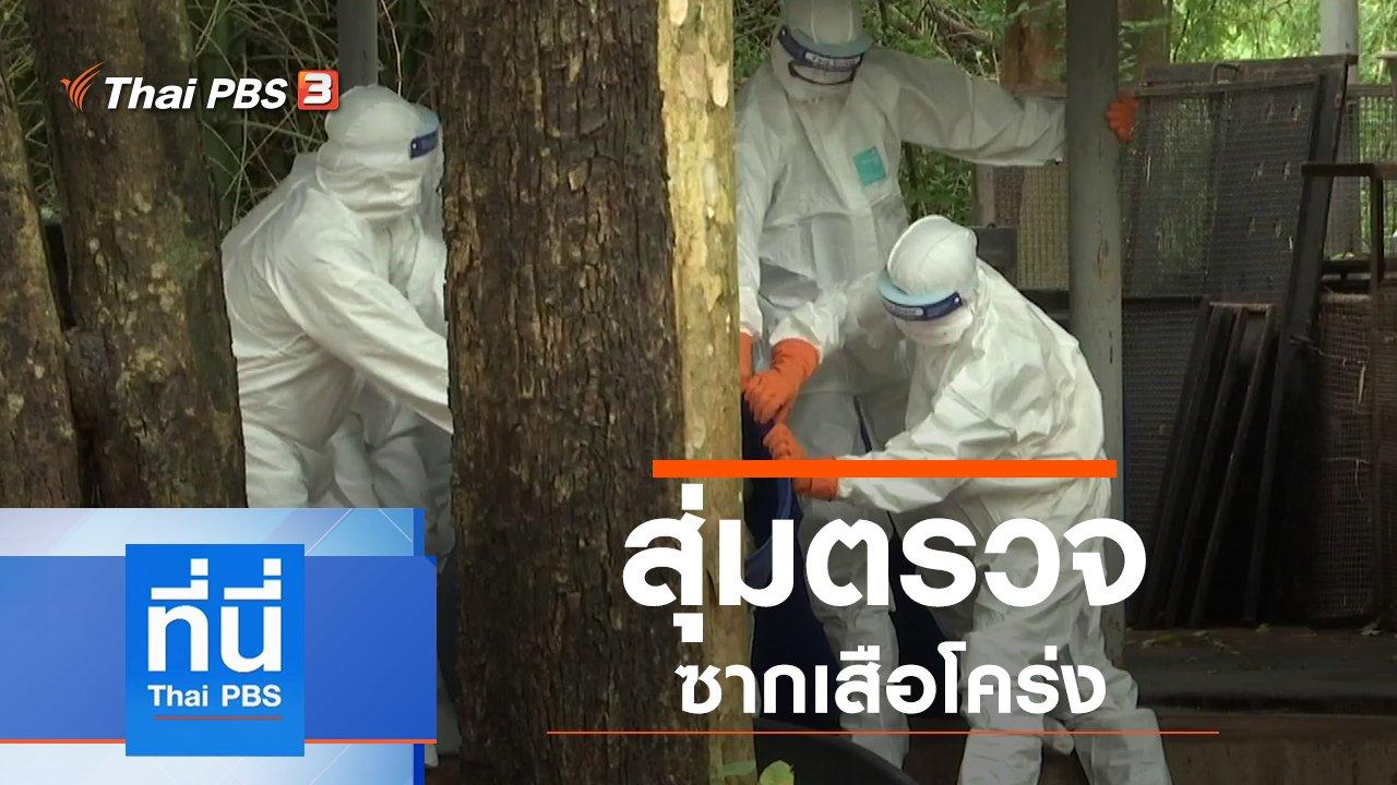 ที่นี่ Thai PBS - ประเด็นข่าว (20 ก.ย. 62)