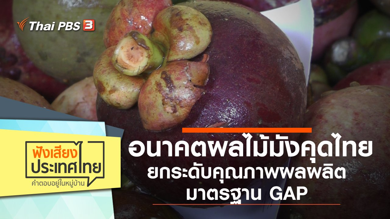 ฟังเสียงประเทศไทย - อนาคตผลไม้มังคุดไทย ยกระดับคุณภาพผลผลิตมาตรฐาน GAP